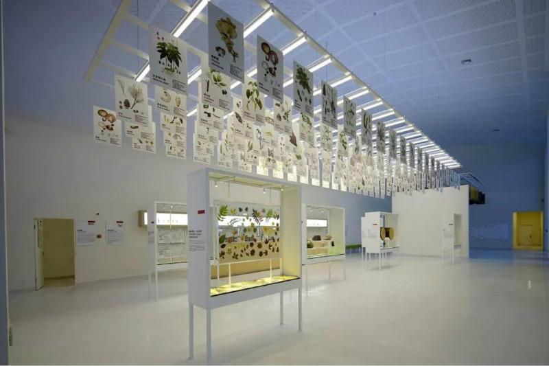 展厅设计分享-农夫山泉展馆设计